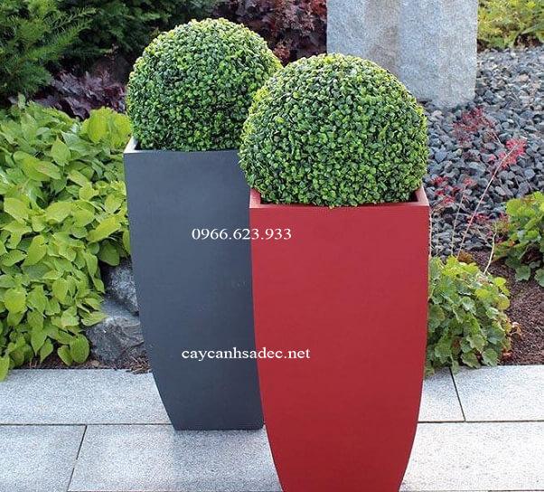 chau-trong-cay-bang-composit-4 Cách phân biệt chậu trồng cây bằng composit đơn giản
